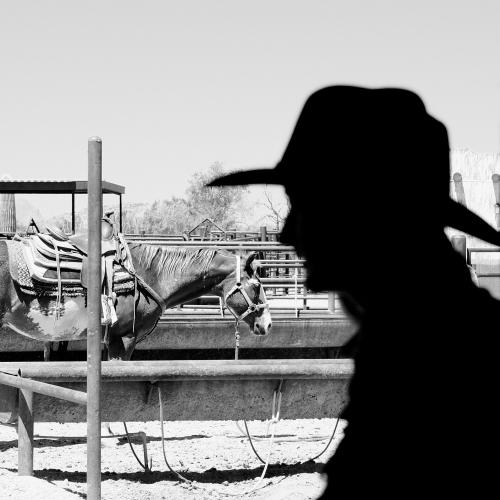 cowgirlsilbyscottbourne